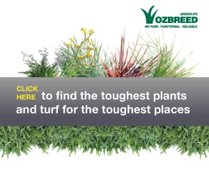 The home of no fuss, functional, drought tolerant plants and turf.