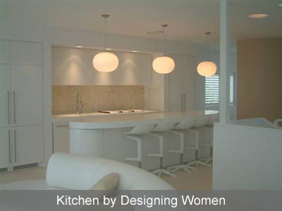 Designing Women Modern Kitchen